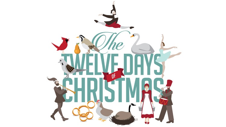 Subject Genius, Andrew Virnuls, The Twelve Days of Christmas