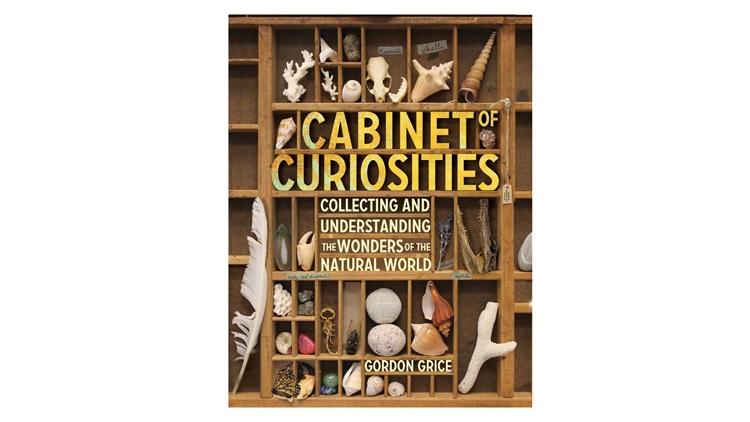 Cabinet of Curiosities, book review, Sarah Williams, Subject Genius