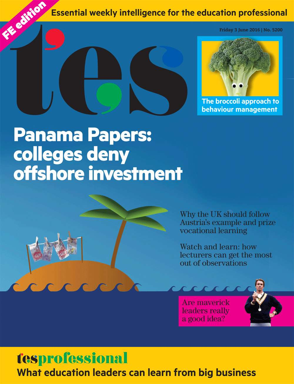 TES Further FErret Panama Papers colleges
