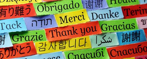 3582.languages.png