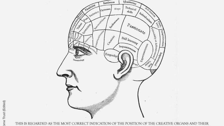 Phrenological head image of a design and technology teacher