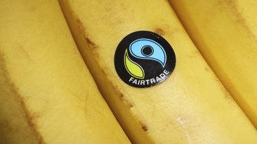 Fairtrade label on a banana, representing Fairtrade Fortnight and ways for EYFS, primary and secondary students to investigate it