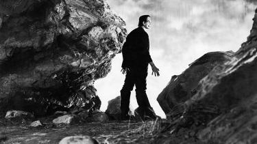 Subject Genius, Spike Literature, Could Frankenstein really do that? A novel approach to teaching the connective curriculum