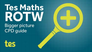 Tes Maths ROTW: Bigger picture CPD guide