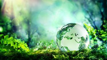 Globe reflecting natural surroundings in a healthy green environment