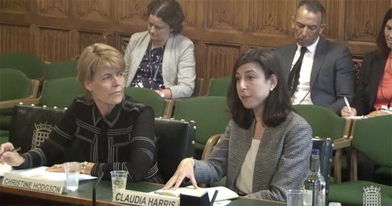 Christine Hodgson and Claudia Harris before MPs on the Commons Education Select Committee