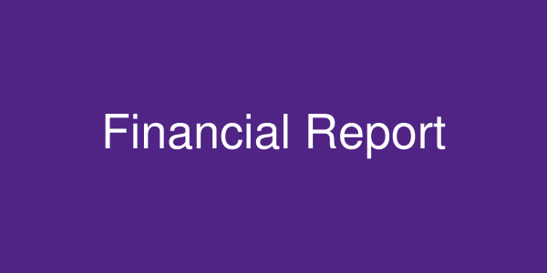 Financial Report placeholder image