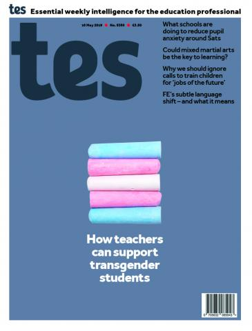 Tes issue 10 May 2019
