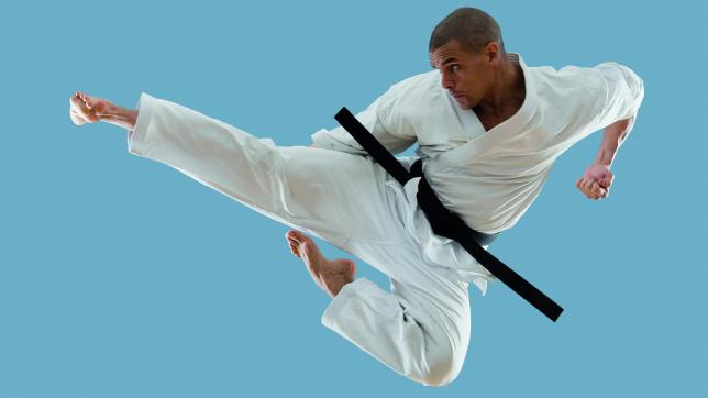 Could martial arts help children learn?