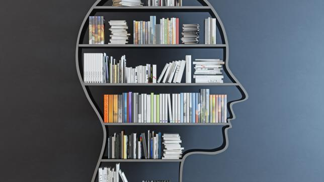Bookshelf in the shape of a human head