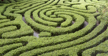 Maze To Show There Are Many Ways To Become A Teacher