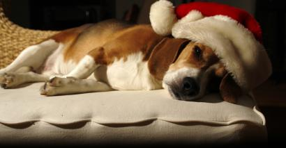 Tired Christmas