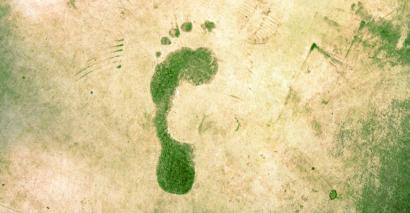 climate change green footprint