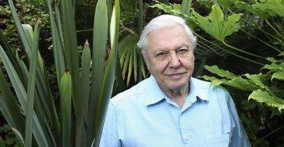 What would Sir David Attenborough make of the animal behaviour on GCSE results day?