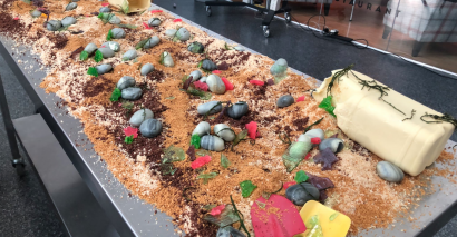 Colleges Week: Staff and students at Cheshire College – South and West have created an edible beach to raise awareness about climate change