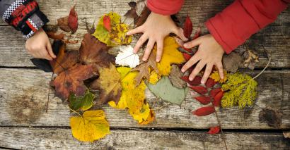 The autumn term: Why November is the backbone of the school year