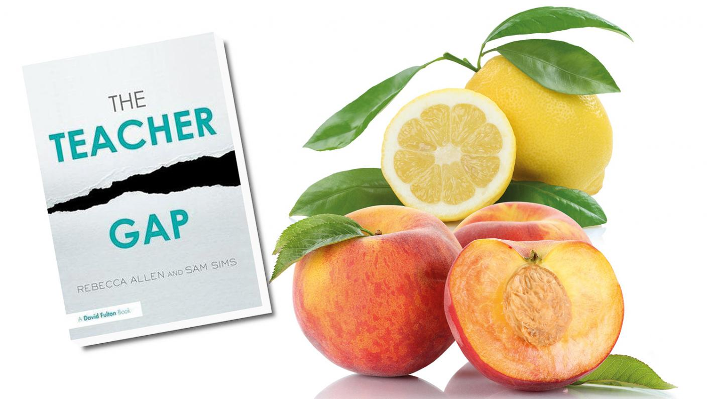 Book review: The Teacher Gap