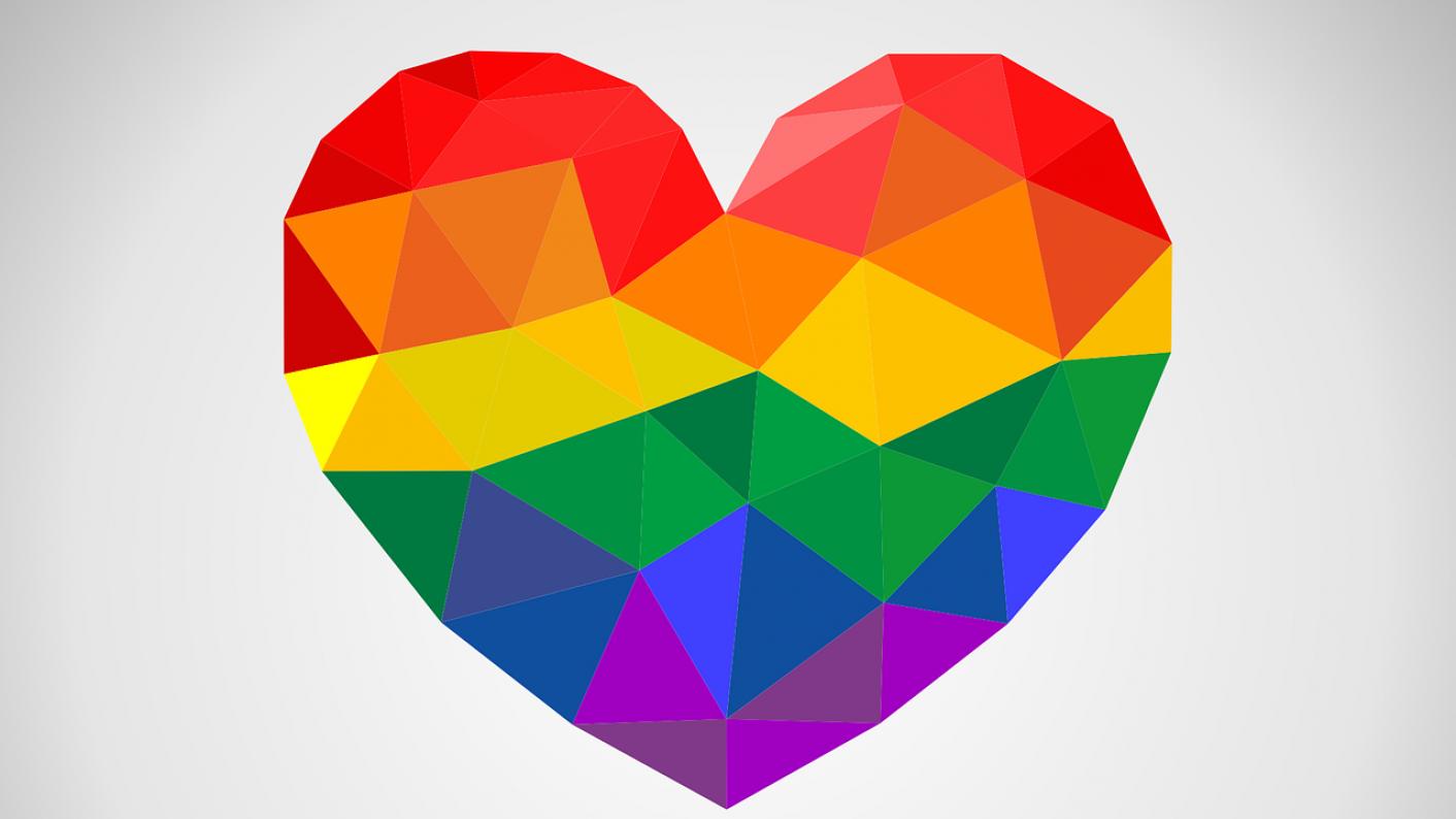 Image result for LGBT PLUS logo Norfolk