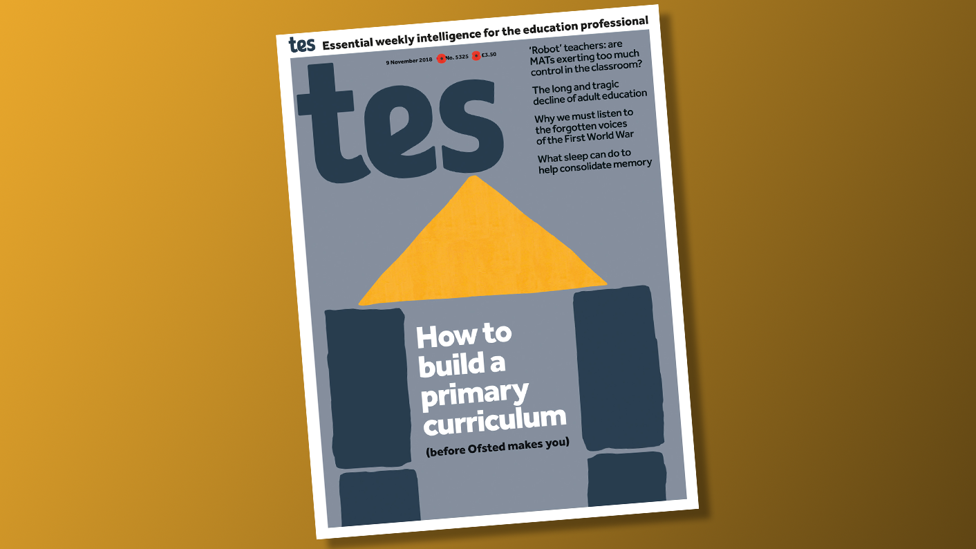 In this week's Tes: primary curricula and MAT meddling