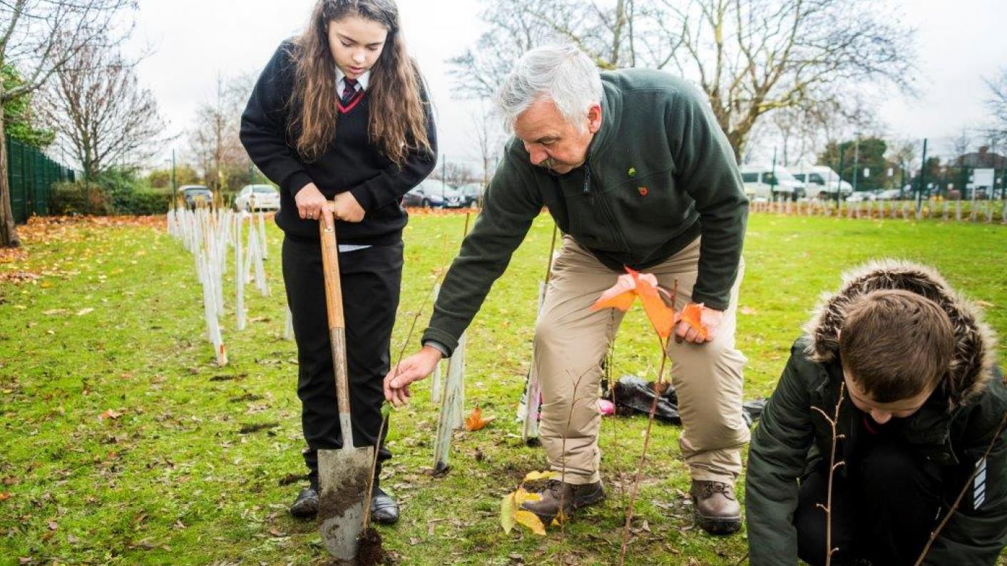 Why every school should be planting trees | Tes News