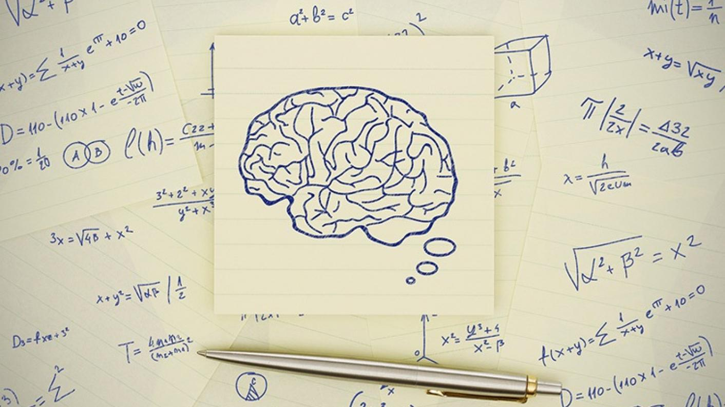 There May Not Be An Easy One Size Fits All Model For The Perfect Mat Brain Diagram News Article Image
