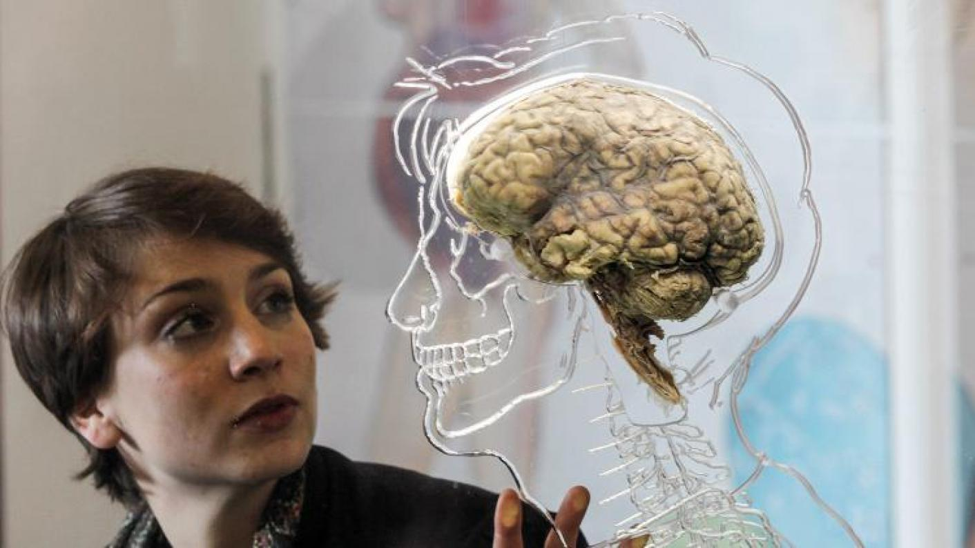 Educational neuroscience 'a bit far-fetched'