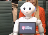 Pepper the Robot appeared before MPs