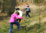 Outdoor learning: Fairfield Primary School in Cumbria, Tes' Healthy School of the Year 2019