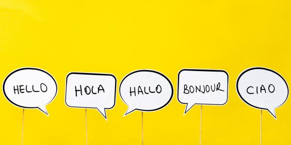 Secondaries failing to deliver 'right' to languages