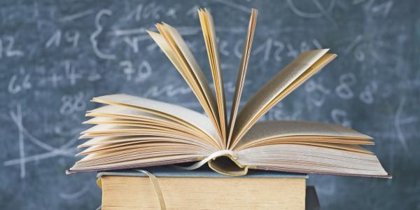 Weak readers struggle more in maths than in English lit